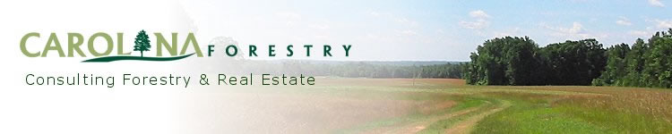 north carolina land for sale and consulting forestry