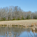 alamance county land for sale
