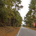 bladen county land for sale