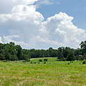 chatham county farm for sale