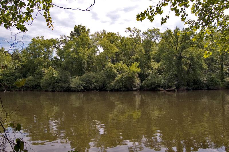 Swingers in haw river nc