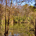 chatham county haw river front land for sale