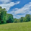farm for sale davidson county