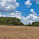 land for sale dav idson county north carolina