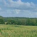 farm for sale davie county