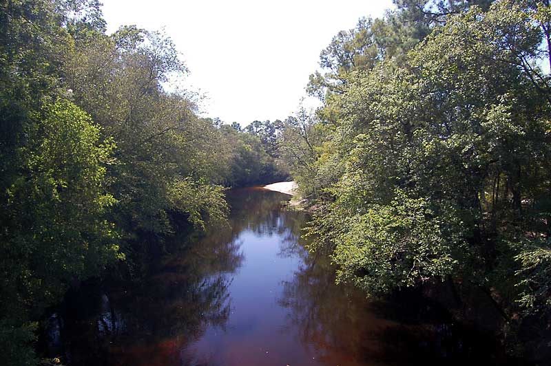Waterfront Land For Sale On The Northeast Cape Fear River Nc