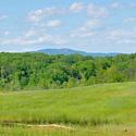 forsyth county farm for sale