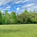 farm for sale forsyth county