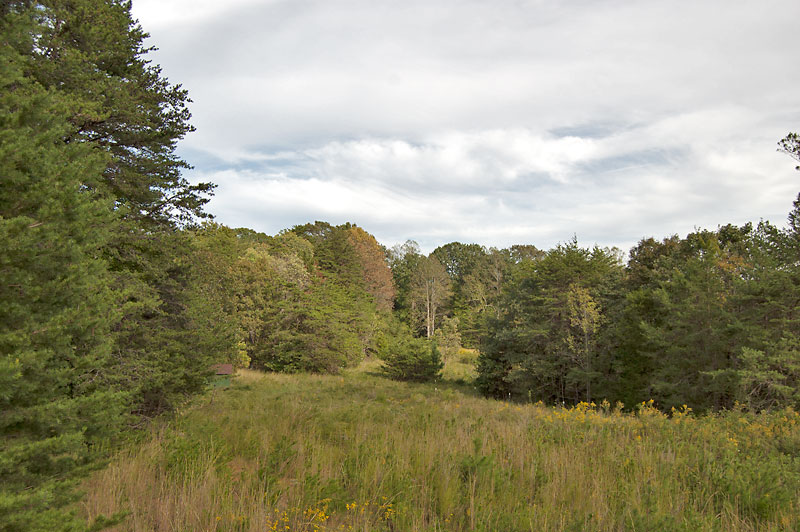 Forsyth County Land For Sale