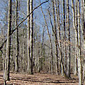franklin county lots for sale