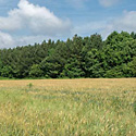 gaston county farm for sale