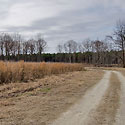 halifax county hunting land for sale