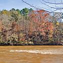 cape fear river land for sale