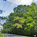moore county land for sale