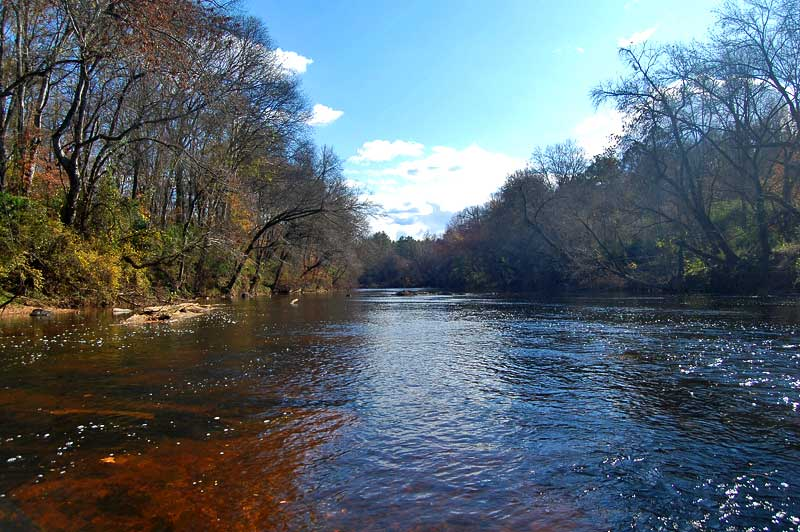 Land For Sale On The Deep River Moore County North Carolina