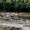 tar river land for sale