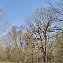 orange county land for sale