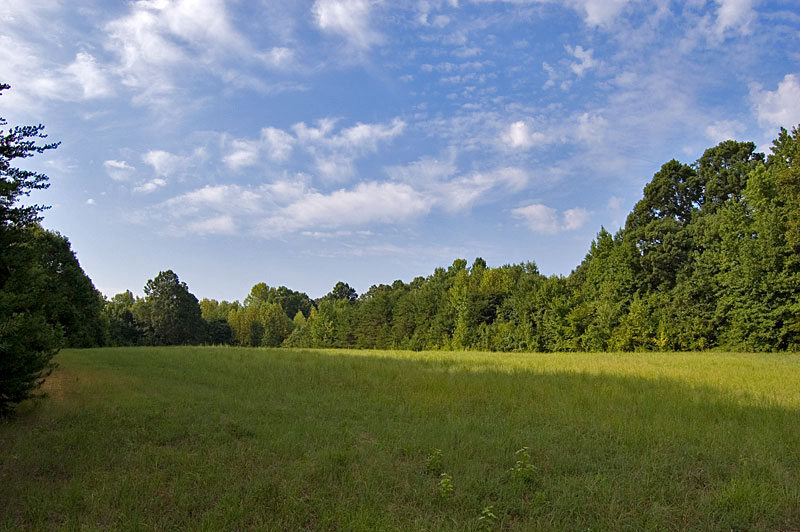 Land For Sale 24 Acres Person County North Carolina