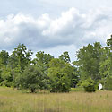 stokes county land for sale