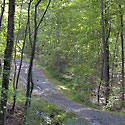 land for sale in king nc