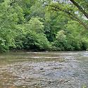 dan river land for sale