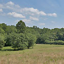 farm for sale stokes county