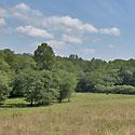 farm for sale stokes county