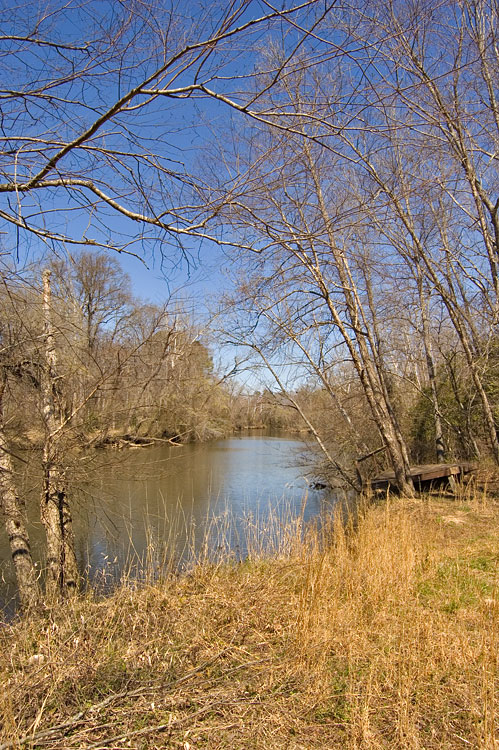 11 Acre Waterfront Lot For Sale On The Neuse River In