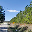 lot for sale in warren county