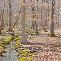 yadkin county land for sale